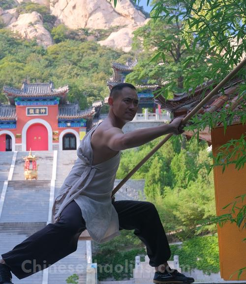 Shaolin martial arts and Mantis boxing