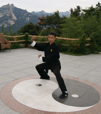 Traditional Tai Chi Master