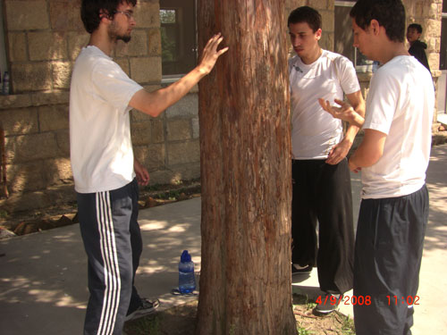 Students from Norway and England are conditioning hands on the tree