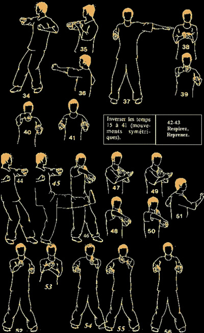 learn wing chun at home for free