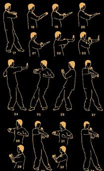 Wing Chun Xun Qiao