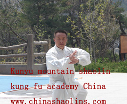 kung fu performance show held by kunyu mountain china