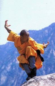 Age of Wushu: Meridians