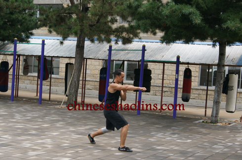 Nick spent two month to learn Shaolin kung fu and animal kungfu styles