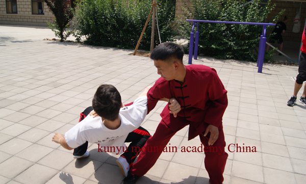 Chinese Tai chi quan